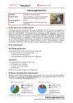 Steckbrief Fahrzeuglackierer/-in (m/w/d)